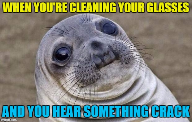Everything looked fine - as best as I could tell without my glasses... :) | WHEN YOU'RE CLEANING YOUR GLASSES AND YOU HEAR SOMETHING CRACK | image tagged in memes,awkward moment sealion,glasses | made w/ Imgflip meme maker