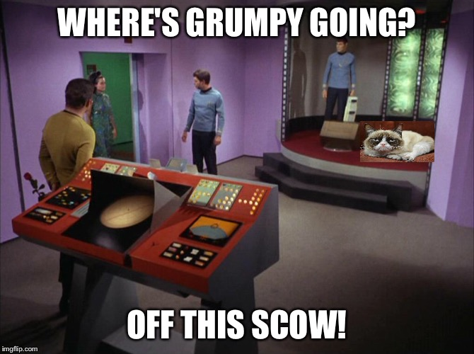 I'm outta here! | WHERE'S GRUMPY GOING? OFF THIS SCOW! | image tagged in grumpy cat,star trek,star trek week | made w/ Imgflip meme maker