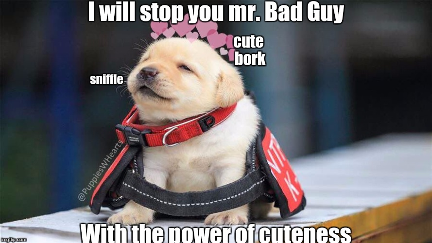 GO NO FURTHER FIEND! | I will stop you mr. Bad Guy With the power of cuteness sniffle cute bork | image tagged in awww,slowstack | made w/ Imgflip meme maker