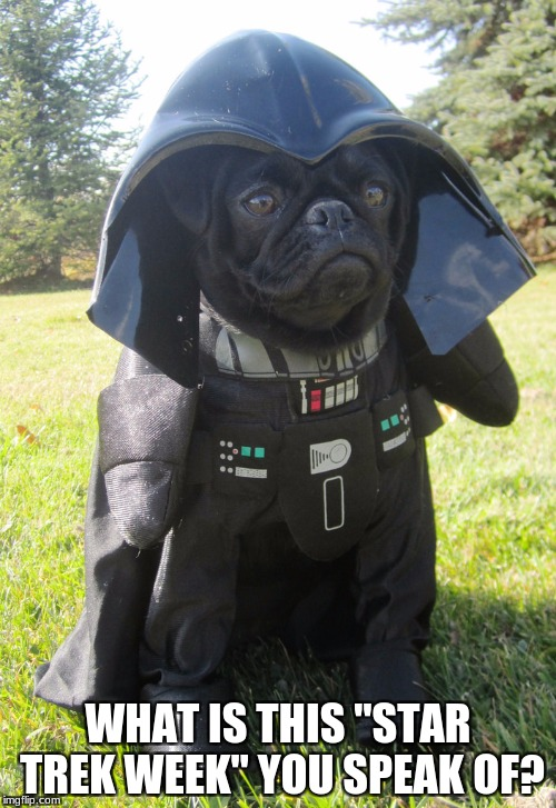 "ha ha vader dog too cute | WHAT IS THIS ""STAR TREK WEEK"" YOU SPEAK OF? 