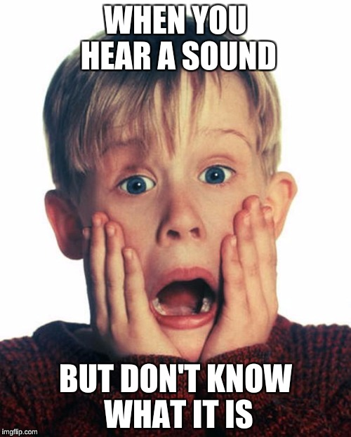 WHEN YOU HEAR A SOUND BUT DON'T KNOW WHAT IT IS | image tagged in home alone scream | made w/ Imgflip meme maker