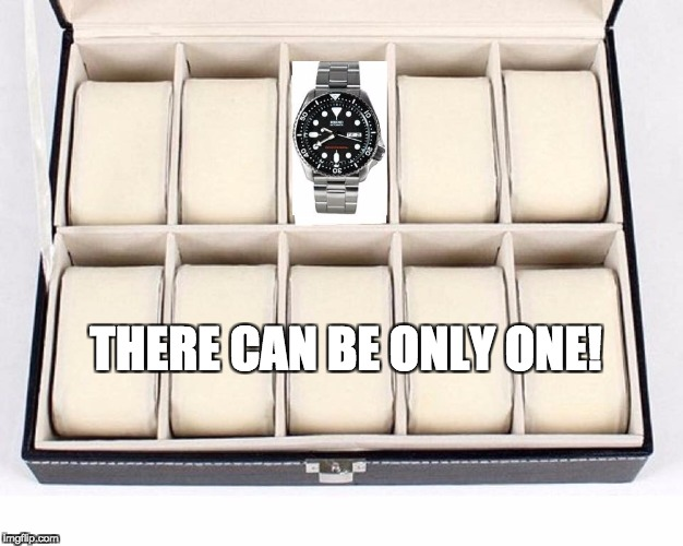 THERE CAN BE ONLY ONE! | THERE CAN BE ONLY ONE! | image tagged in skx,watches,wgwc,there can be only one | made w/ Imgflip meme maker
