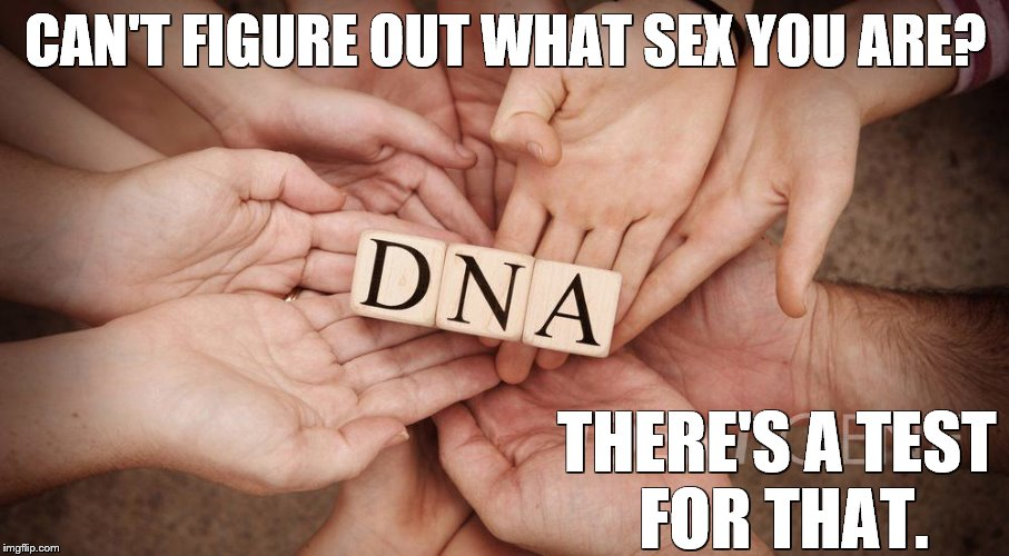 CAN'T FIGURE OUT WHAT SEX YOU ARE? THERE'S A TEST FOR THAT. | image tagged in dna,transgender,sex jokes | made w/ Imgflip meme maker