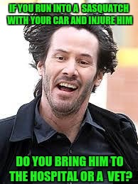 Which is it? | IF YOU RUN INTO A  SASQUATCH WITH YOUR CAR AND INJURE HIM DO YOU BRING HIM TO THE HOSPITAL OR A  VET? | image tagged in keanu,bigfoot,sasquatch,vet | made w/ Imgflip meme maker