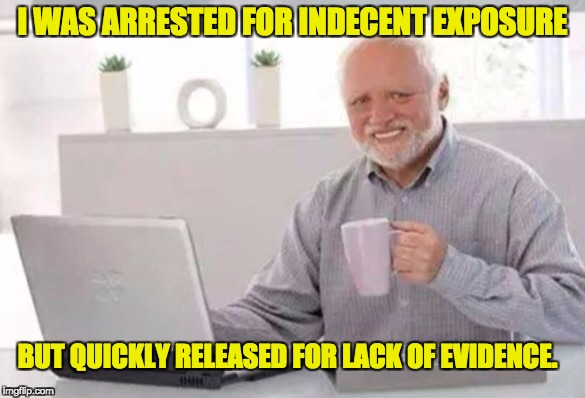 Harold | I WAS ARRESTED FOR INDECENT EXPOSURE BUT QUICKLY RELEASED FOR LACK OF EVIDENCE. | image tagged in harold | made w/ Imgflip meme maker