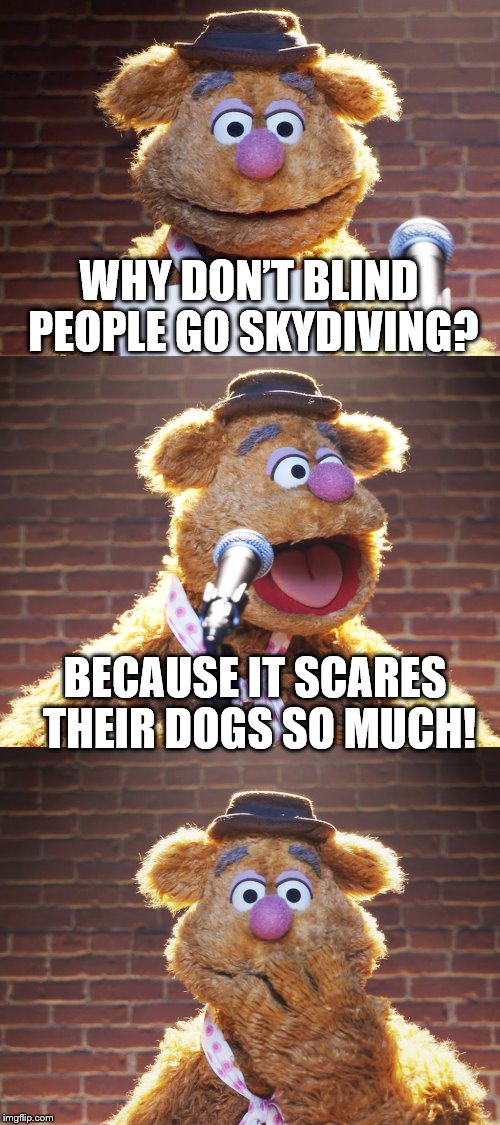 Fozzie Jokes | WHY DON'T BLIND PEOPLE GO SKYDIVING? BECAUSE IT SCARES THEIR DOGS SO MUCH! | image tagged in fozzie jokes,inferno390 | made w/ Imgflip meme maker