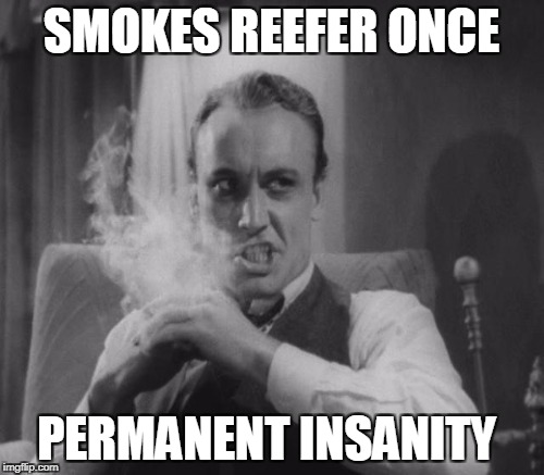 SMOKES REEFER ONCE PERMANENT INSANITY | made w/ Imgflip meme maker