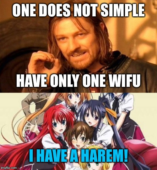 ONE DOES NOT SIMPLE I HAVE A HAREM! HAVE ONLY ONE WIFU | made w/ Imgflip meme maker