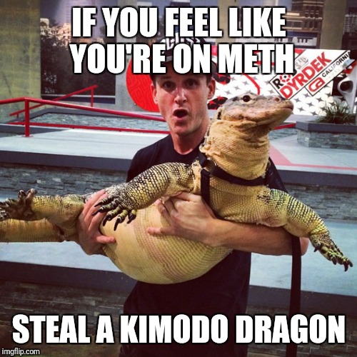 IF YOU FEEL LIKE YOU'RE ON METH STEAL A KIMODO DRAGON | made w/ Imgflip meme maker