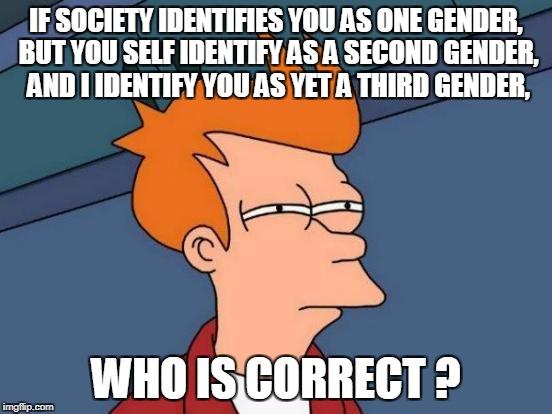 Futurama Fry Meme | IF SOCIETY IDENTIFIES YOU AS ONE GENDER, BUT YOU SELF IDENTIFY AS A SECOND GENDER, AND I IDENTIFY YOU AS YET A THIRD GENDER, WHO IS CORRECT  | image tagged in memes,futurama fry | made w/ Imgflip meme maker