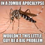 mosquito  | IN A ZOMBIE APOCALYPSE WOULDN'T THIS LITTLE GUY BE A BIG PROBLEM | image tagged in mosquito | made w/ Imgflip meme maker