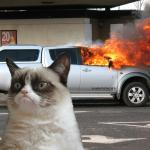 Grumpy Cat Car on Fire meme