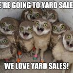 Excited Owls | WE'RE GOING TO YARD SALES? WE LOVE YARD SALES! | image tagged in excited owls | made w/ Imgflip meme maker