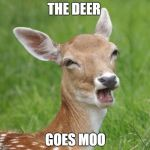 Go Home Bambi, You're Drunk | THE DEER GOES MOO | image tagged in go home bambi,you're drunk | made w/ Imgflip meme maker