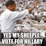 obama sheep | YES MY SHEEPLE... VOTE FOR HILLARY | image tagged in obama sheep | made w/ Imgflip meme maker