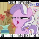 I can really see the resemblance | HUH, HOW ODD SHE LOOKS KINDA LIKE MY MOM | image tagged in mlp wtf | made w/ Imgflip meme maker