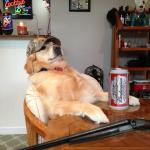 redneck retriever meme