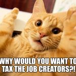 scared cat | WHY WOULD YOU WANT TO TAX THE JOB CREATORS?! | image tagged in scared cat | made w/ Imgflip meme maker