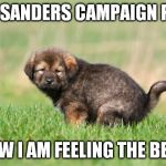 Ouch | I ATE A SANDERS CAMPAIGN POSTER NOW I AM FEELING THE BERN | image tagged in puppy pooping | made w/ Imgflip meme maker