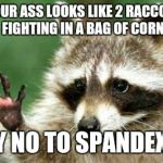 Hello raccoon | IF YOUR ASS LOOKS LIKE 2 RACCOONS FIGHTING IN A BAG OF CORN SAY NO TO SPANDEX!!!! | image tagged in hello raccoon | made w/ Imgflip meme maker