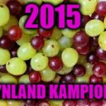 Grapes... | 2015 WYNLAND KAMPIOENE | image tagged in grapes | made w/ Imgflip meme maker