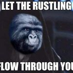 Emperor Rustling | LET THE RUSTLING FLOW THROUGH YOU | image tagged in emperor rustling,rustle my jimmies,memes | made w/ Imgflip meme maker
