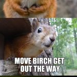 Bad pun week? That's just nuts! | WHAT'D THE SQUIRREL SAY WHEN A TREE FELL IN HIS PATH MOVE BIRCH GET OUT THE WAY | image tagged in bad pun squirrel | made w/ Imgflip meme maker