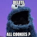 cookie monster | DELETE ALL COOKIES ? | image tagged in cookie monster | made w/ Imgflip meme maker