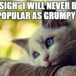 First World Problems Cat Meme Generator - Imgflip