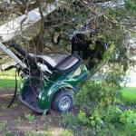 Golf Cart in Tree meme