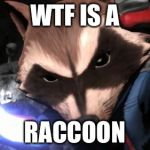 Rocket Raccoon Meme | WTF IS A RACCOON | image tagged in memes,rocket raccoon | made w/ Imgflip meme maker