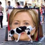 Dog Peeing On HIllary Clinton meme