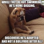 It's just Bull-oney! | WHILE THEY'RE OUT SWIMMING, HE'S HOME DIGGING, DISCOVERS HE'S ADOPTED, AND NOT A BULLFROG AFTER ALL! | image tagged in bulldogsad | made w/ Imgflip meme maker