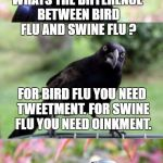 bad pun crow | WHATS THE DIFFERENCE BETWEEN BIRD FLU AND SWINE FLU ? FOR BIRD FLU YOU NEED TWEETMENT. FOR SWINE FLU YOU NEED OINKMENT. | image tagged in bad pun crow | made w/ Imgflip meme maker