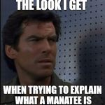 Bothered Bond Meme | THE LOOK I GET WHEN TRYING TO EXPLAIN WHAT A MANATEE IS | image tagged in memes,bothered bond | made w/ Imgflip meme maker