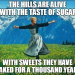 When You're On A Sugar Rush | THE HILLS ARE ALIVE WITH THE TASTE OF SUGAR WITH SWEETS THEY HAVE BAKED FOR A THOUSAND YEARS | image tagged in sound of music | made w/ Imgflip meme maker