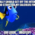 Dory meme facebook and study