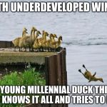 baby ducks | WITH UNDERDEVELOPED WINGS THE YOUNG MILLENNIAL DUCK THINKS HE KNOWS IT ALL AND TRIES TO FLY | image tagged in baby ducks | made w/ Imgflip meme maker