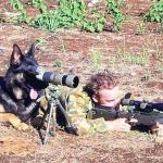 Dog spotter on sniper team meme