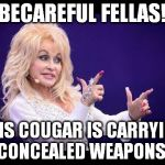 becareful fellas | BECAREFUL FELLAS! THIS COUGAR IS CARRYING CONCEALED WEAPONS! | image tagged in dolly parton | made w/ Imgflip meme maker