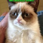 Grumpy Cat Meme | IF YOU KNOW HOW MANY CALORIES ARE IN A JELLY DONUT YOU'RE EATING IT WRONG | image tagged in memes,grumpy cat | made w/ Imgflip meme maker