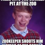 FALLS INTO THE GORILLA PIT AT THE ZOO ZOOKEEPER SHOOTS HIM INSTEAD OF THE GORILLA | image tagged in memes,bad luck brian | made w/ Imgflip meme maker