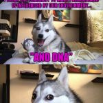 "I THINK THE TENDENCY TO MAKE PALINDROMES IS INFLUENCED BY OUR ENVIRONMENT... ""AND DNA"" 