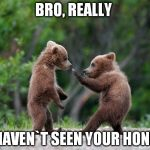 Bro Bears | BRO, REALLY I HAVEN`T SEEN YOUR HONEY | image tagged in self defence bear | made w/ Imgflip meme maker