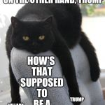 Draped Cat Be Like | ON THE ONE HAND, HILLARY, ON THE OTHER HAND, TRUMP HOW'S THAT SUPPOSED TO BE A CHOICE? HILLARY TRUMP | image tagged in black cat draped on chair,draped cat,on the one hand,trump and hillary,how's that supposed to be a choice | made w/ Imgflip meme maker