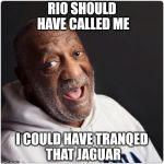 Bill Cosby on the Rio Jaguar Incident | RIO SHOULD HAVE CALLED ME I COULD HAVE TRANQED THAT JAGUAR | image tagged in bill cosby admittance,olympics,jaguar,animal rights,peta | made w/ Imgflip meme maker