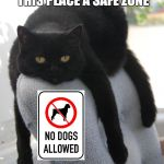 Draped Cat Be Like | NOW THAT I'VE DESIGNATED THIS PLACE A SAFE ZONE I CAN FINALLY RELAX | image tagged in black cat draped on chair,draped cat,designated safe zone,i can relax,memes,funny | made w/ Imgflip meme maker