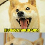 Bad Pun Doge | HOW CAN YOU TELL BAD PUN DOG IS NOT TO SMART? HE CHASES PARKED CARS! | image tagged in bad pun doge,bad pun dog,funny meme,funny memes,jokes,laugh | made w/ Imgflip meme maker