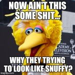 Big Bird Meme | NOW AIN'T THIS SOME SHIT... WHY THEY TRYING TO LOOK LIKE SNUFFY? | image tagged in memes,big bird | made w/ Imgflip meme maker