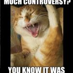 Laughing Cat | WHY DO I GET SO MUCH CONTROVERSY? YOU KNOW IT WAS A GOOD MEME! | image tagged in laughing cat | made w/ Imgflip meme maker